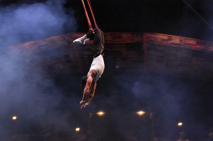 Circo Gran Fele, la compañía circense valenciana, llega por Navidad con su mágico espectáculo El Tren. #circogranfele #granfele #rambleta #circo #circus #navidad #valencia