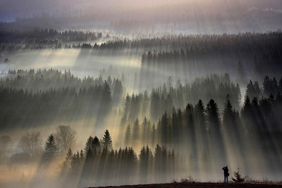 Morning expression - Beskidy