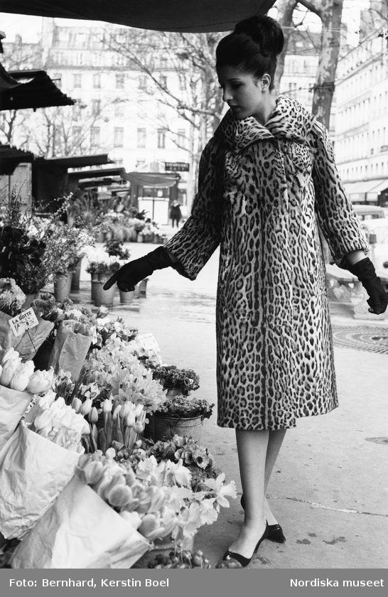 Modell klädd i leopardpäls. pumps och handskar tittar på snittblommor. Foto: Kerstin Bernhard, 1963