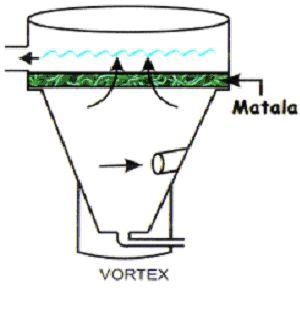 Vortex filter using Matlala Biomedia