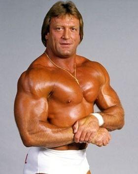 """Mr Wonderful"" Paul Orndorff Hometown: Brandon, Florida Weight: 246Ibs"
