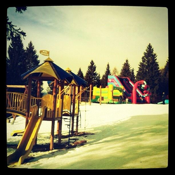 giocare sulla #neve #trentino #predaiapark con i vostri bambini ... ma ci si diverta anche da grandi con la slitta!!!