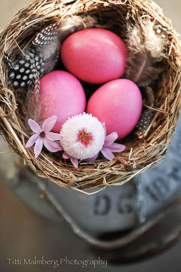 1000  images about easter on pinterest