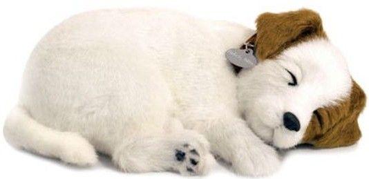 Adopteer je eigen huisdier. De Perfect Petzzz zien eruit als echte huisdieren, door hun zachte vacht en doordat ze lijken te ademen. Ze worden geleverd met een mandje, borstel en certificaat van adoptie. De Perfect Petzzz maken geen geluid en hebben een afmeting van 27 x 17 x 10 cm. Exclusief 1 D batterij. Er zijn verschillende Perfect Petzzz pups en katten verkrijgbaar.   Afmeting: volgt later.. - Perfect Petzzz soft Jack Russell