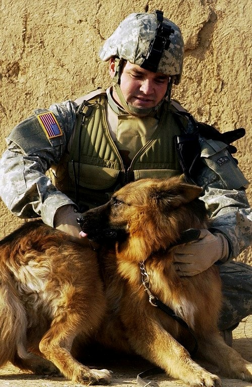 USAF K-9 dog handler, Staff Sgt. Russell McLaughlin, attached to 25th Infantry Division takes a moment to scratch the back of his furry companion after the completion of a raid at Tall Qabb village, Kirkuk Province, Dec. 8, 2006.       Photo by Staff Sgt. Samuel Bendet
