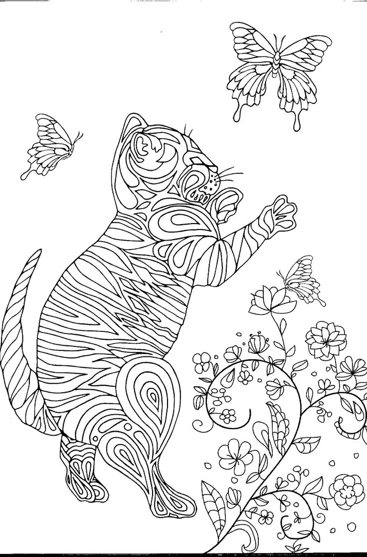 Coloring book kittens - Toyger Kitten With Butterfly