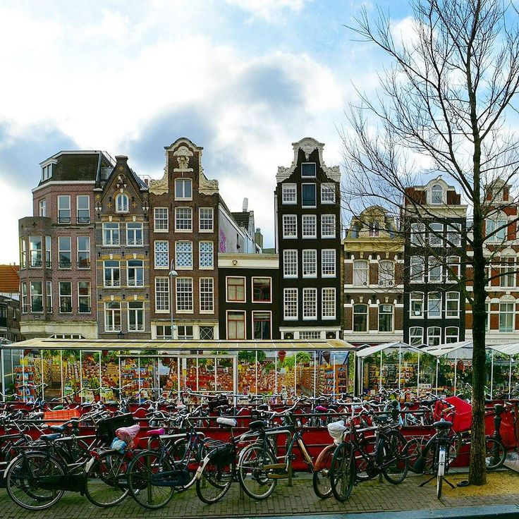 Houses  bikes and stalls of the flower  market along the Singel Amsterdam.