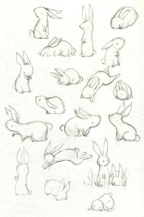 It's been a while since I've drawn anything, so I did about half an hour of warm up bunnies before starting a fresh freelance assignment. Also I finished Watership Down last week and liked it quite a...