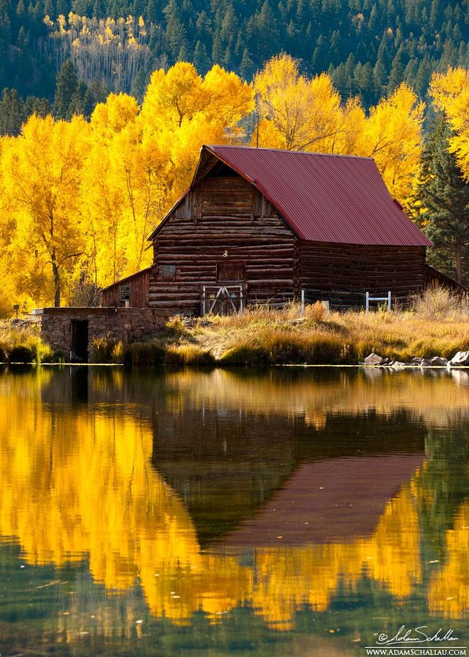 Beautiful picture of an old barn surrounded by fall colors.
