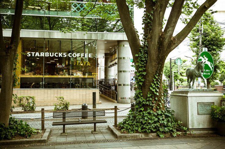 喧騒と暑さを忘れ、本の世界へ小さな旅に | スターバックス コーヒー オフィシャルブログ : Starbucks Coffee Blog