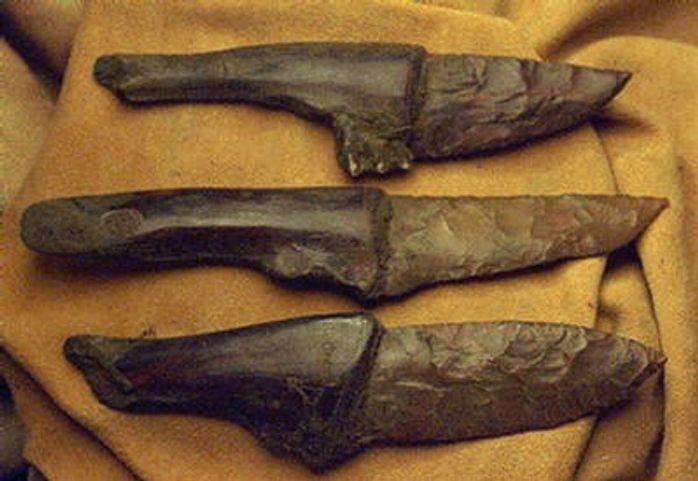 картинки древнего ножа животные имеют совершенно