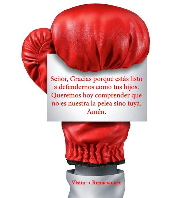 devoc-peleara21