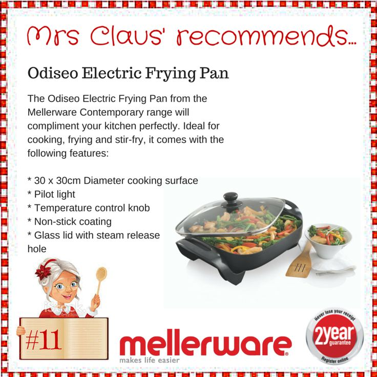 Day 11 - Odiseo Electric Frying Pan