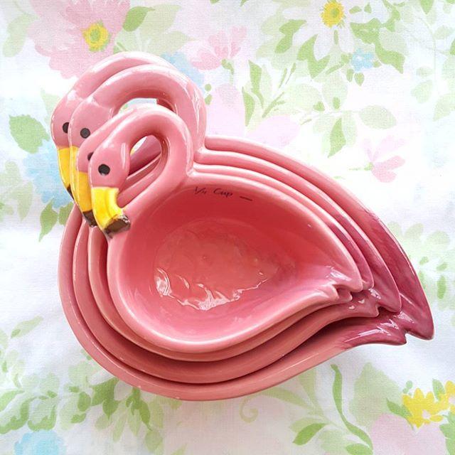 Photo from flamingotoes