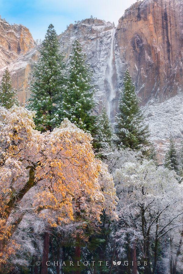 Yosemite snow (California) by Charlotte Gibb / 500px