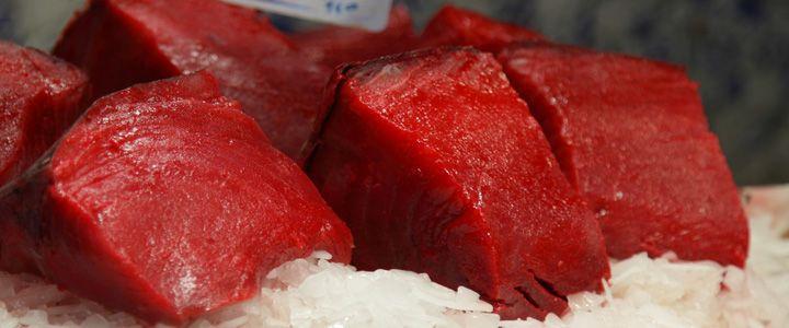 L'ossimoro del seducente tonno andaluso lardellato