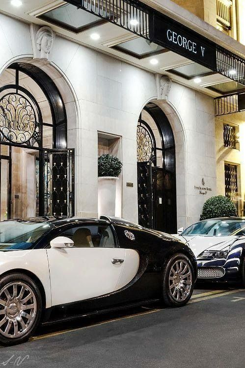 Champagne and Caviar Dreams Billionaire Babe...Her LifeStyle Bella Donna