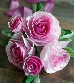 Ombre Crepe Paper Flowers