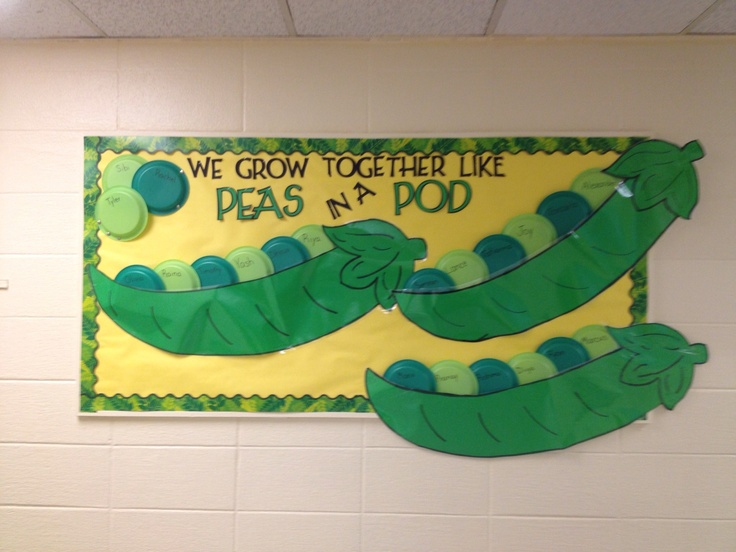 """""""We fit together like Peas in a Pod"""" back to school bulletin board."""