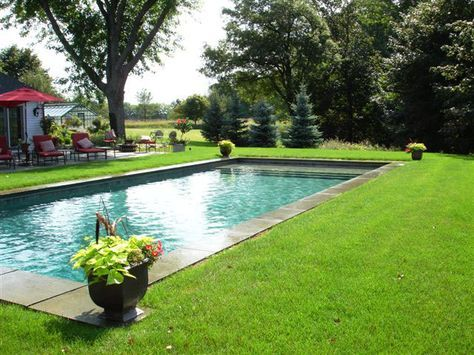 Best 25+ Inground Pool Designs Ideas On Pinterest   Small Inground Swimming  Pools, Small Inground Pool And Small Yard Pools