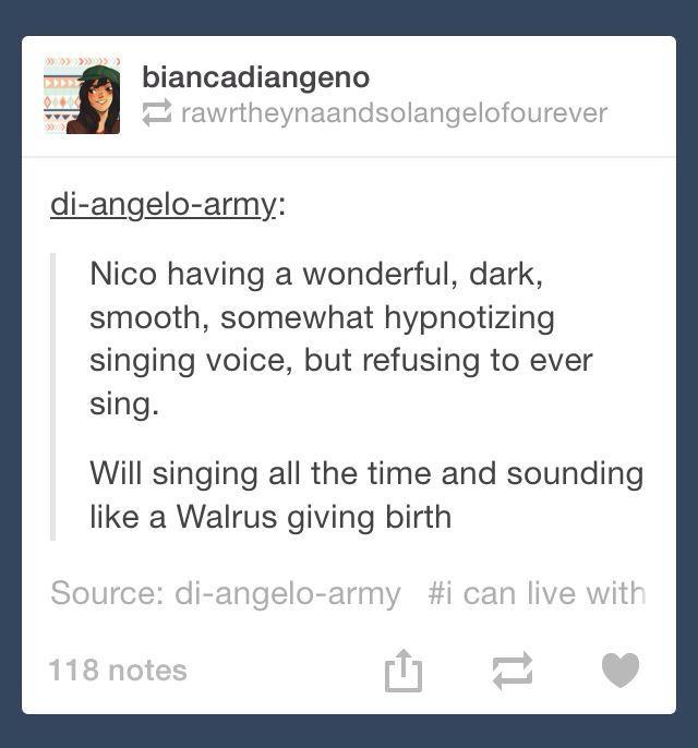 Nico di Angelo & Will Solace