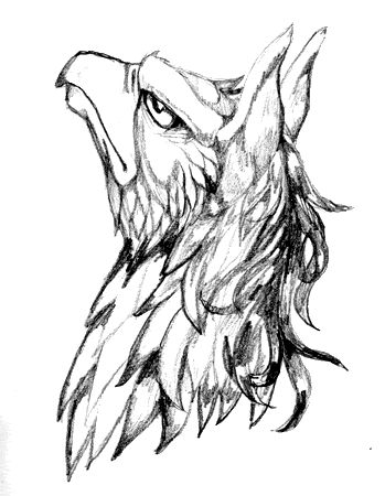 griffin - Google Search