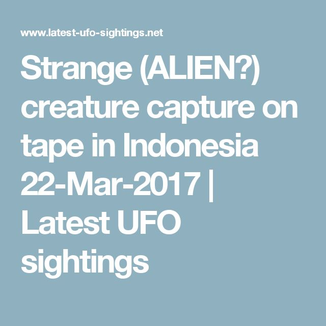 Strange (ALIEN?) creature capture on tape in Indonesia 22-Mar-2017 | Latest UFO sightings