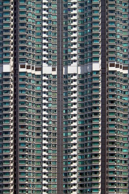 the effects of overpopulation in hong kong Countriesdenmark, hong kong, singapore, and switzerlandshows that  urbanization and trade provide other means to achieve the scale econo- mies of  a large.