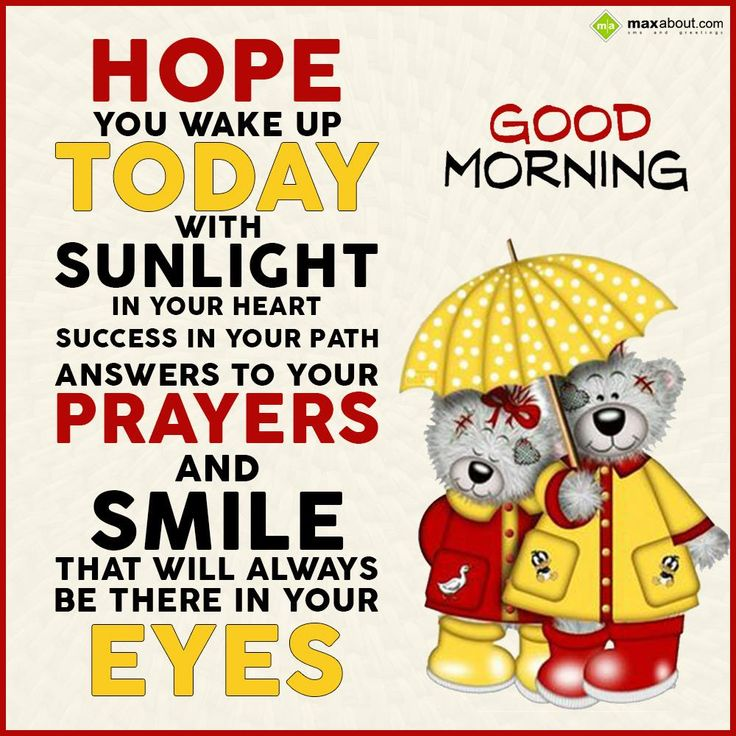 Hope you wake up today with sunlight in your heart, success in your path, answers to your prayers and smile that will always be there in your eyes.  Good Morning !