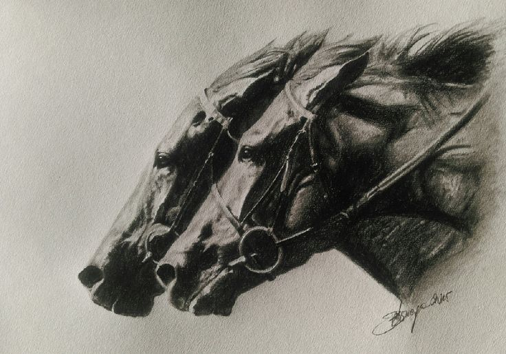 Home Stretch by Mihaela Bosnegeanu on ArtClick.ie Equine Art