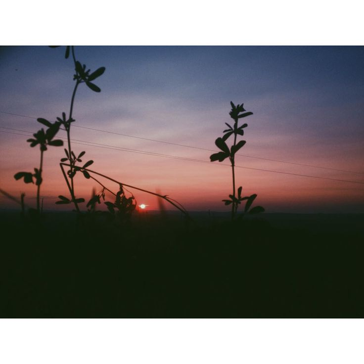 #sunset #vsco #vscocam