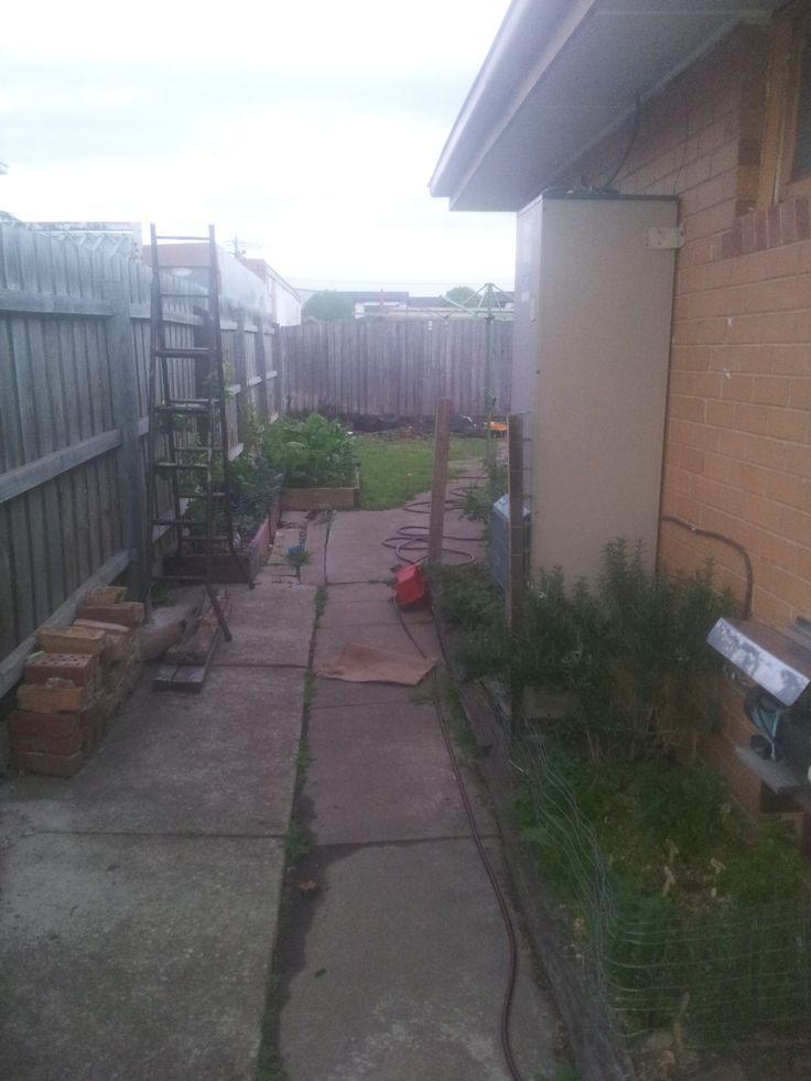 Back Facing Side Garden (Oct 2014)