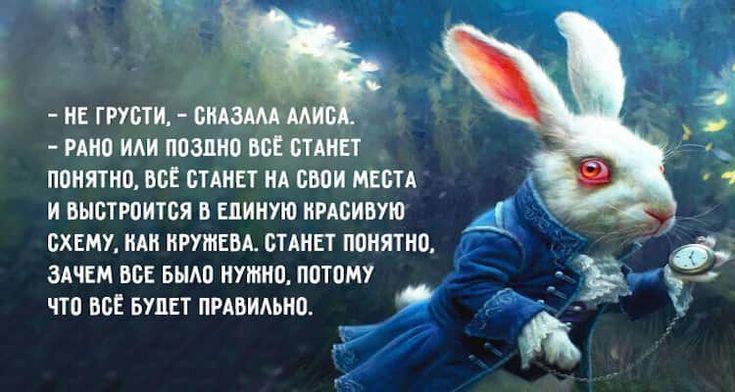 Лучшие цитаты из «Алисы в стране чудес» Льюиса Кэрролла ...