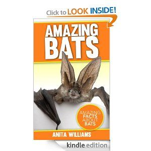 5 Free Kindle Books: Amazing Bats, Presidential Facts for Fun: Taylor to Cleveland, plus more