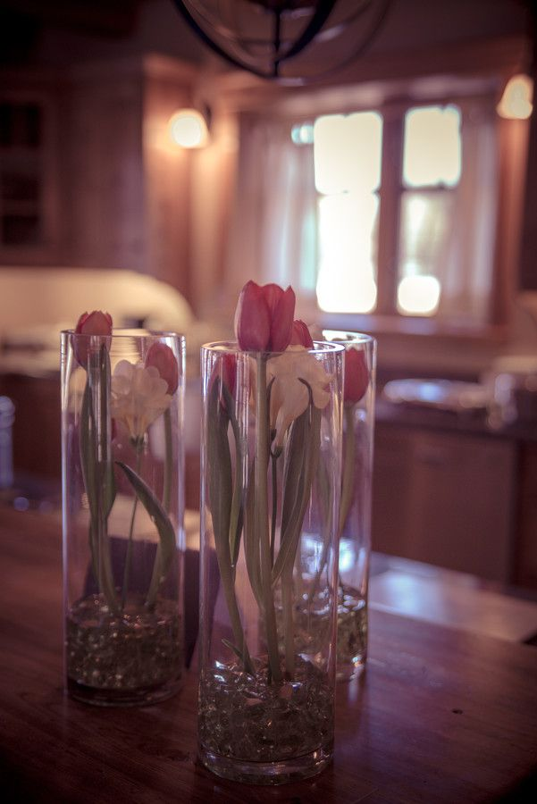 Easter Tulips by Amber Harloff on 500px
