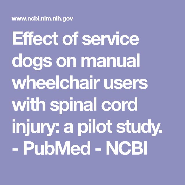 Effect of service dogs on manual wheelchair users with spinal cord injury: a pilot study.  - PubMed - NCBI