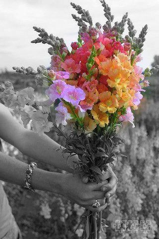 578 Best Images About A Touch Of Color On Pinterest