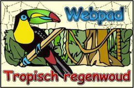 Webpad tropisch regenwoud