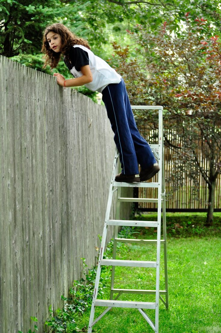 Girl On Ladder Peeking Over Privacy Fence Around The