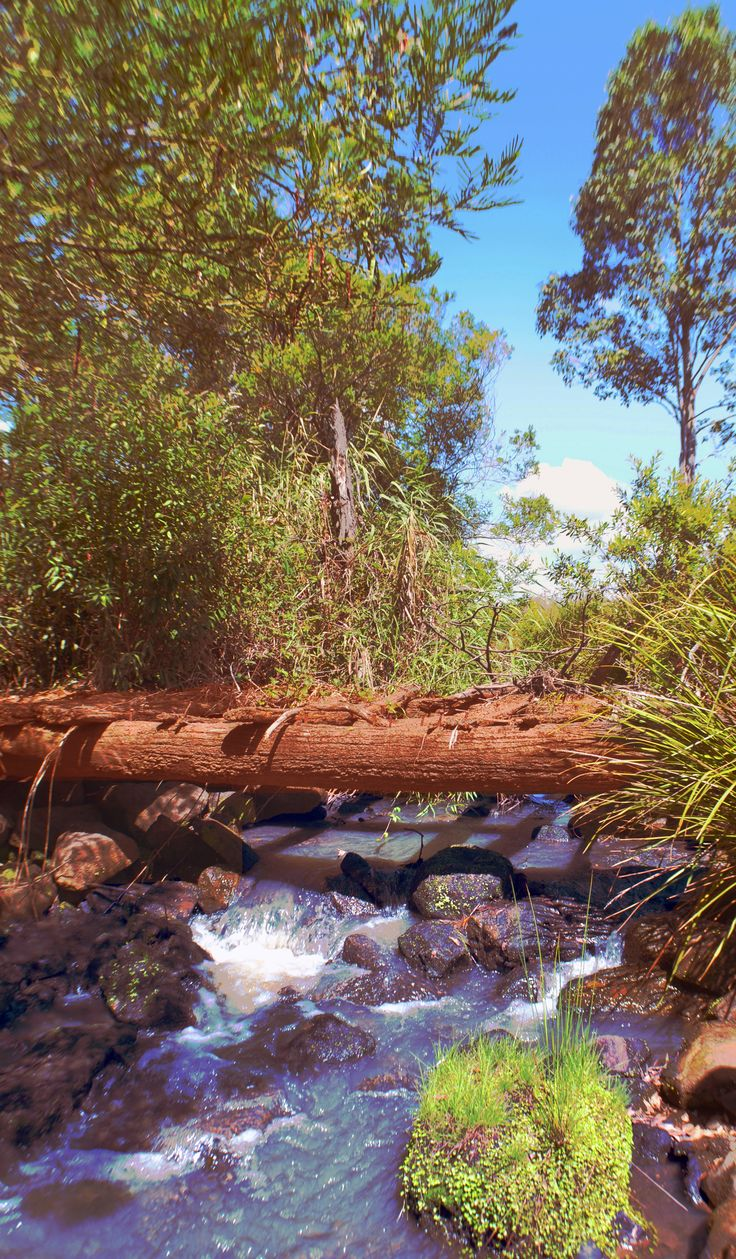 """Wollombi is a small pictureseque historic village and gateway to the Hunter Valley. The name """"Wollombi"""" is believed to be Aboriginal, meaning """"meeting of the waters"""". The village is ric…"""