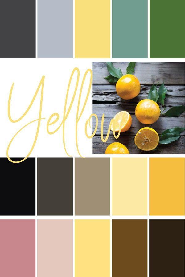 Color palette examples   Paint Swatch Galore   Orange color