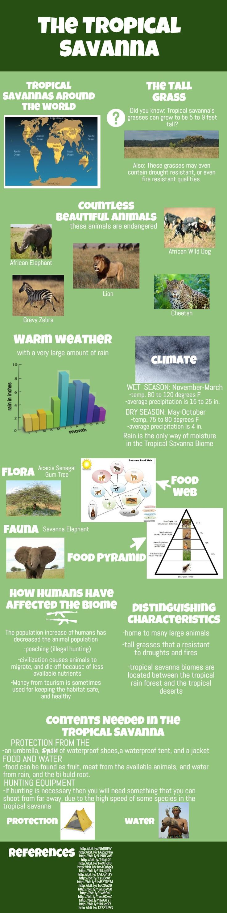This infographic talks about the animals, location, plants, climate, etc. of the savanna.