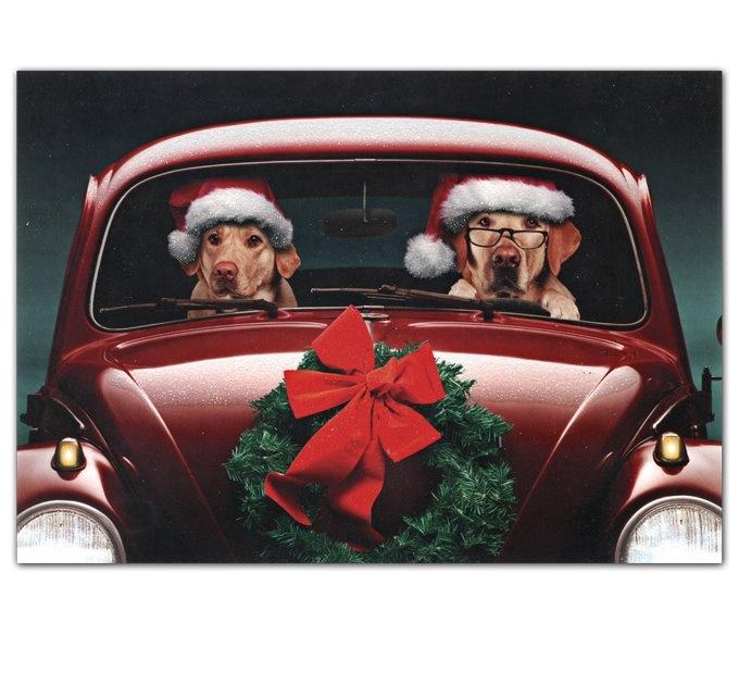 christmas labs vw beetle classic wwwlindsayvolkswagencom dulles loudouncounty