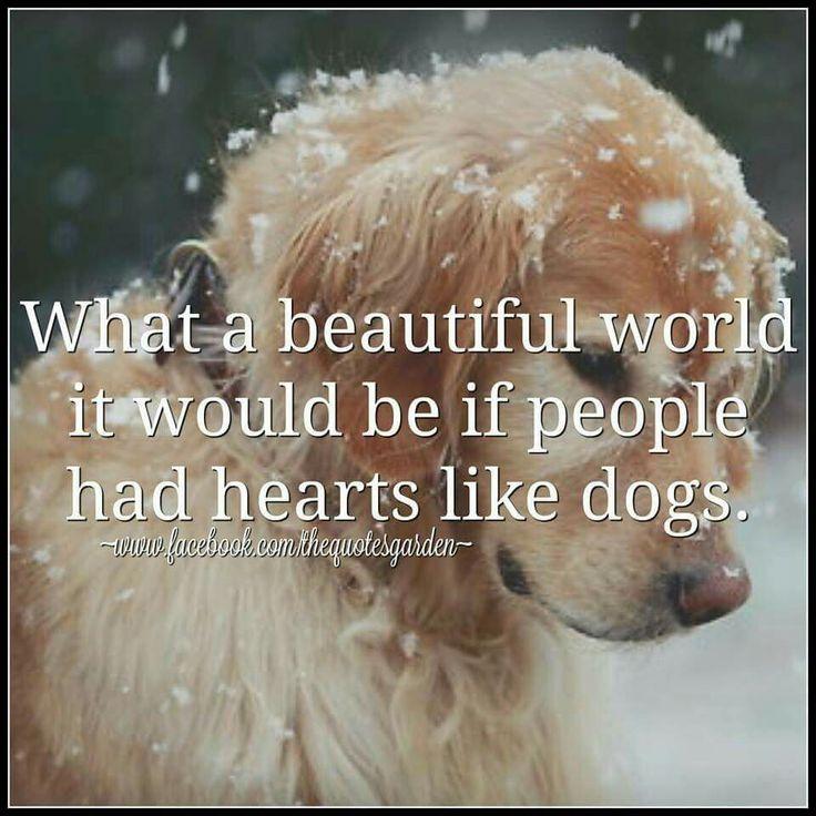 What a beautiful world...