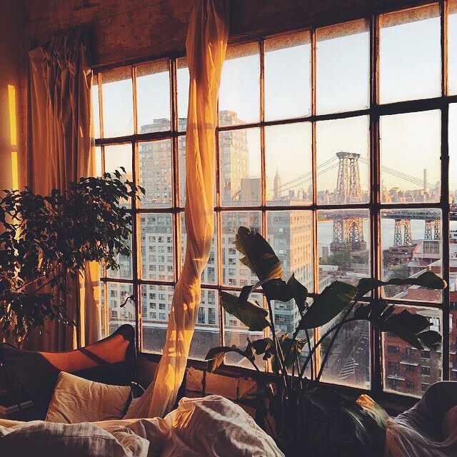 Golden hour #dcnlifestyle #dcninteriors