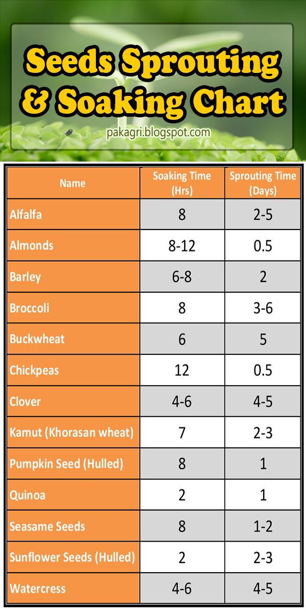 Seeds Sprouting and Soaking Chart