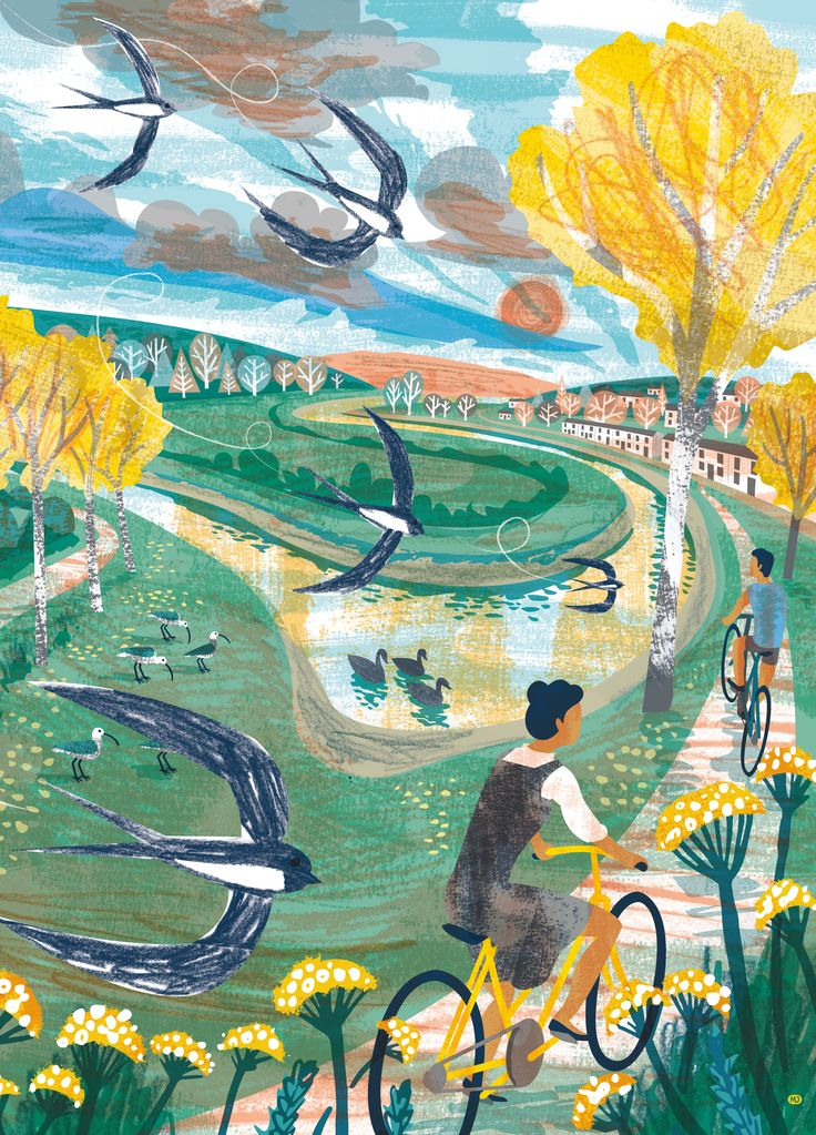 Illustration of cyclists on the River Camel Trail at Wadebridge, Cornwall. By Matt Johnson for the AW15 Seasalt catalogue.