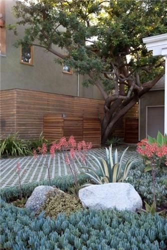 Permeable driveway reduces water runoff and allows rainwater to percolate in the soil to water deep rooted plants, filter the water, and resupply the aquifer.