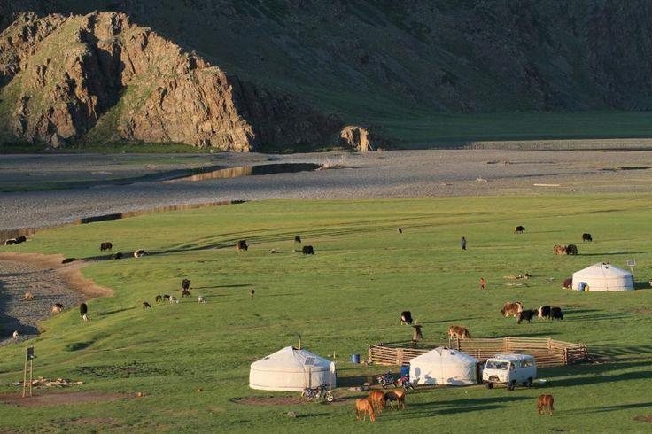 En 12 jours découvrez la Mongolie dans toute sa diversité steppe et forêts du centre lac dans son écrin de nature et splendeurs du désert de Gobi. Un voyage économique ...