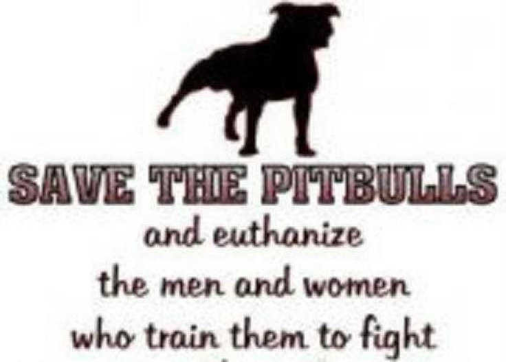 Amen!!: Pitti, Animal Lovers, Amenities, Quote, Pet, Pitbull, So True, Pit Bull, People